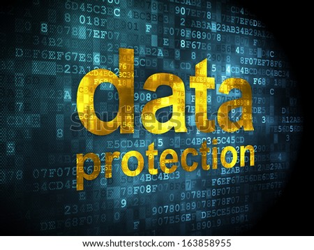 Privacy concept: pixelated words Data Protection on digital background, 3d render