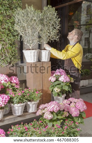 Prize-winning male florist in his popular  flower shop arranging and presenting his plants on display