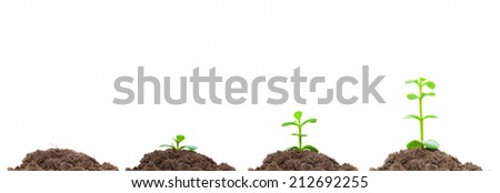 Process of green plan growing in soil. Isolated on white. Concepts of new life, growth, progress etc