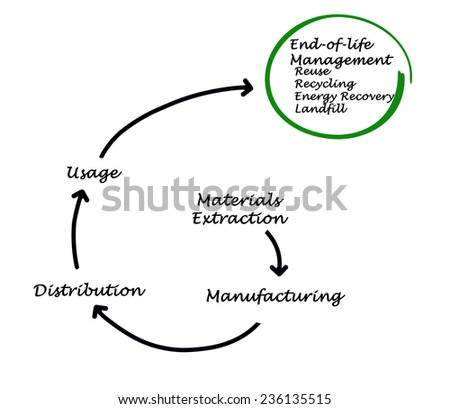 vector life cycle plant kids stock vector 217089595