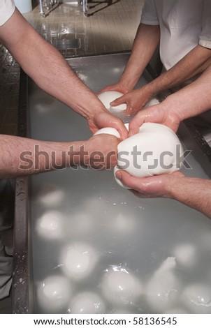 Production of mozzarella cheese - stock photo