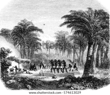 Production of palm oil Whyda, Guinea, Cote Slave, vintage engraved illustration. Magasin Pittoresque 1846.