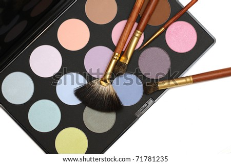 Professional cosmetics and make-up set - brushes and eyeshadow