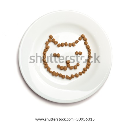 Professional dry cat food forming cat's face on a white plate, isolated on white. - stock photo