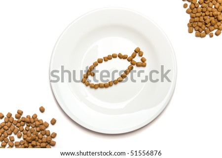 Professional dry cat food with tuna forming a fish on a white plate and heaps of food in the corners. - stock photo