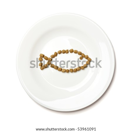 Professional dry cat food with tuna forming a fish on a white plate isolated on white. - stock photo
