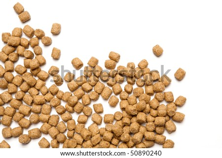 Professional dry pet food spread out on white background. - stock photo
