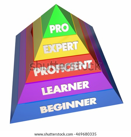 Professional Expert Learner Experience Pyramid 3d Illustration