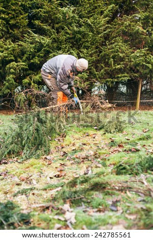 Professional gardener pruning trees with saw. - stock photo