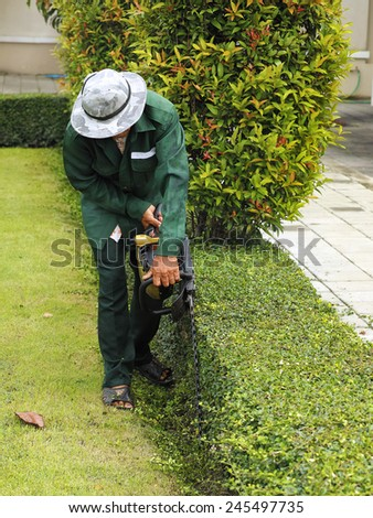 Professional gardener pruning with Hedge Trimmer  - stock photo