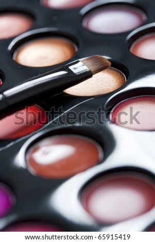 Professional lipstick palette and brush