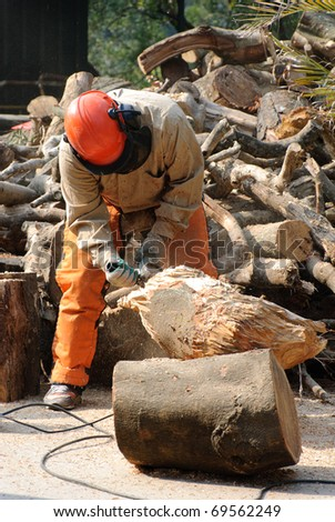 Professional lumberjack at work in the forest - stock photo