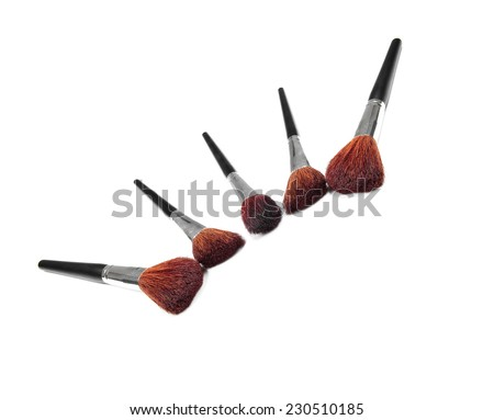 Professional make up and powder brushes isolated on white - stock photo