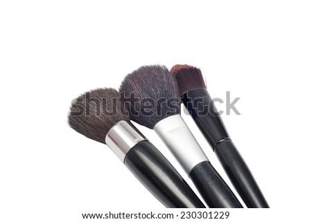 Professional make-up brushes cosmetic isolated on white background - stock photo
