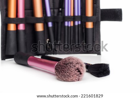 professional make up star  brush - stock photo
