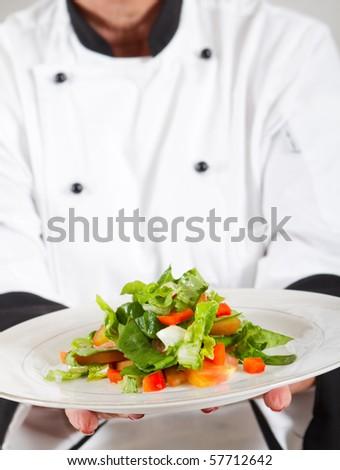 professional senior female chef in kitchen presenting salad - stock photo