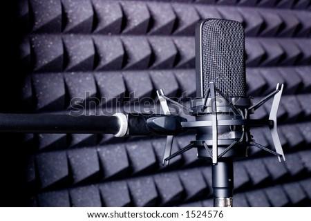 Professional Studio Microphone - stock photo
