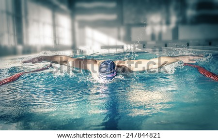 Professional swimmer swims in the pool. Style butterfly.