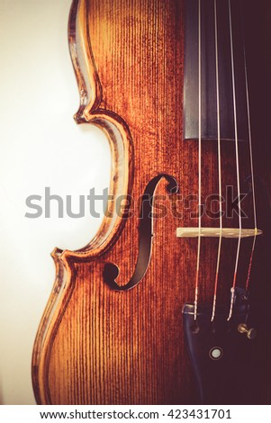 professional violin background close-up toned photo - stock photo