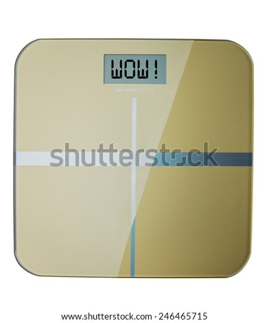 Professional weight scale worth weight in gold - stock photo