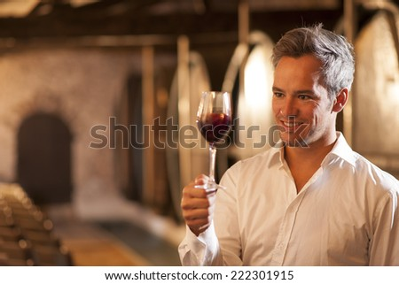 professional winemaker examining a glass of red wine in a traditional cellar surrounded by wooden barrels