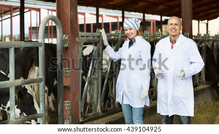 Professional workers in white gown taking care of dairy herd