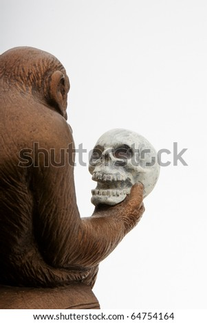 Profile of ape pondering a human skull - stock photo