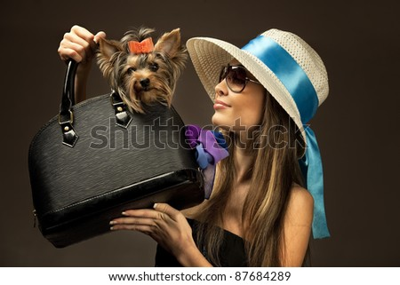 Profile of young glamor woman with Yorkshire Terrier dog in her bag - stock photo