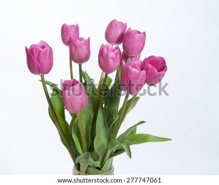 Profile view of pink bouquet of tulips