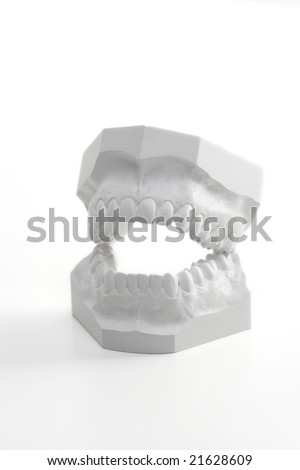 Profile view on a white denture model , made of hard plaster - stock photo