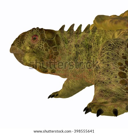 Proganochelys Turtle Head 3D illustration - Proganochelys is the second oldest turtle species discovered and lived in Germany and Thailand in the Triassic Period. - stock photo