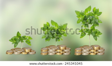 Progress of green business - stock photo