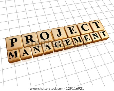 project management text in 3d golden cubes with black letters, business concept