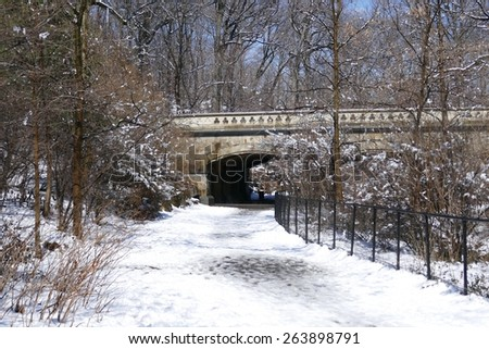 Prospect Park, Brooklyn in the snow