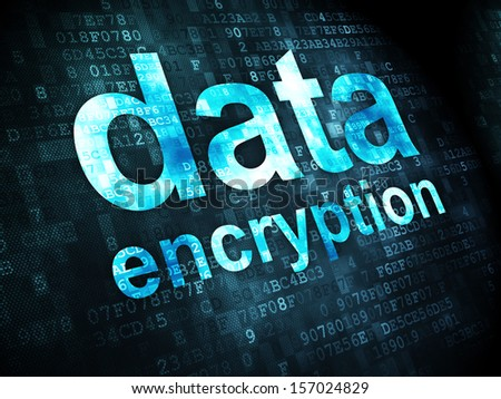 Protection concept: pixelated words Data Encryption on digital background, 3d render