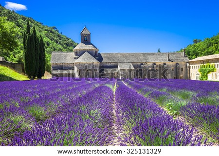 Provence - abbey of Senanque with blooming lavander.France - stock photo