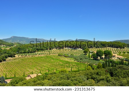 Provence landscape. France. Country house, olive garden and rural field near Barroux - stock photo