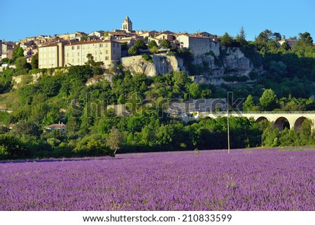 Provence rural landscape. Lavender field near medieval village of Sault at sunset - stock photo
