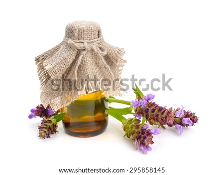 Prunella, self-heals, heal-all, allheal. Isolated on white background. - stock photo