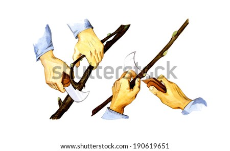 Pruning garden knife - stock photo