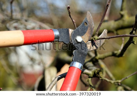 Pruning shears in the garden in early spring - stock photo