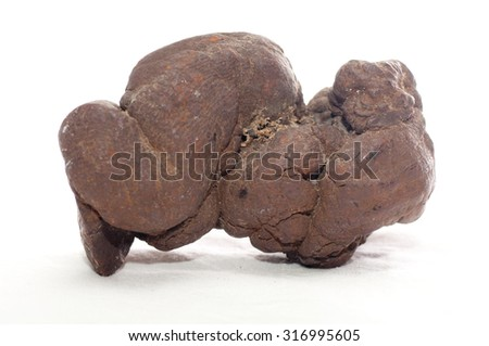 pseudocoprolite or coprolite sample, a form of fossilized poop - stock photo