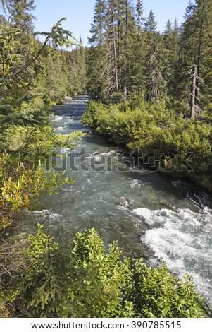 Ptarmigan Creek on a Sunny day in Chugach National Forest in the Kenai Peninsula of Alaska - stock photo