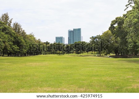 Public park in city. - stock photo