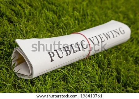 public viewing newspaper on green meadow - stock photo
