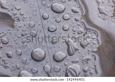 Puddle of rain water and raindrops pattern on wooden deck close up. Reflection of beams and wood grain can be seen through the rain water. - stock photo