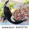 PUERTO DE LA CRUZ, TENERIFE - AUGUST 31: New Orca Ocean exhibit has helped the Loro Parque become Tenerife's second most popular attraction on August 31, 2011 in Puerto De La Cruz, Tenerife. - stock photo