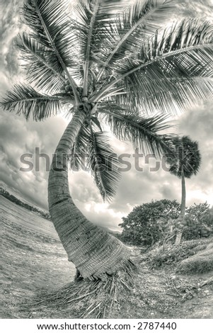 Puerto Plata - Caribbean - sepia - stock photo