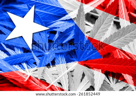 Puerto Rico Flag on cannabis background. Drug policy. Legalization of marijuana - stock photo