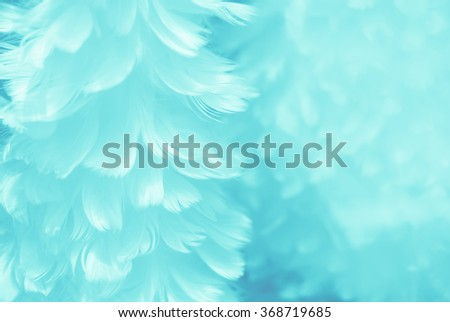 Puffy baby blue bird feather animal texture background - shallow depth of field and soft focus - stock photo